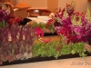 back of low settings of succulents, snapdragons and more for the coffee tables