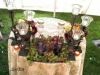 gorgeous-bridal-table-with-succulents-and-wrought-iron-300x169